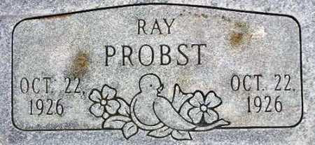 PROBST, RAY - Wasatch County, Utah | RAY PROBST - Utah Gravestone Photos