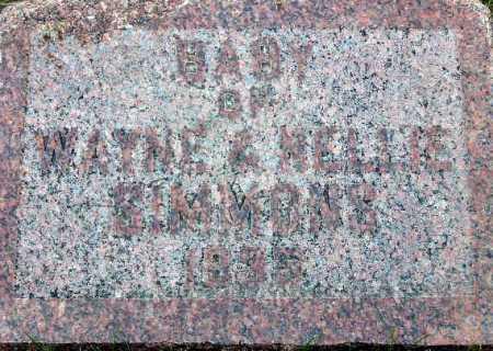 SIMMONS, BABY - Wasatch County, Utah | BABY SIMMONS - Utah Gravestone Photos