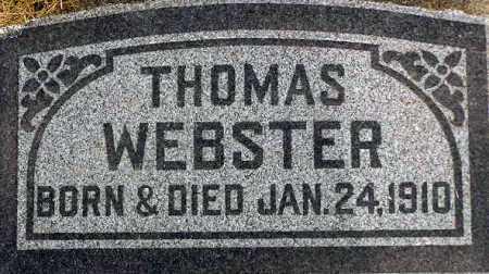 WEBSTER, THOMAS - Wasatch County, Utah | THOMAS WEBSTER - Utah Gravestone Photos