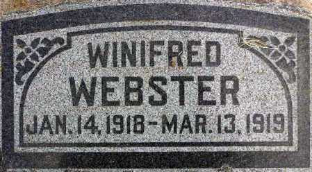WEBSTER, WINIFRED - Wasatch County, Utah | WINIFRED WEBSTER - Utah Gravestone Photos