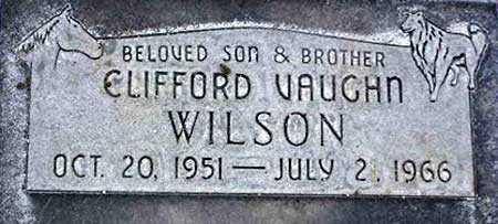WILSON, CLIFFORD VAUGHN - Wasatch County, Utah | CLIFFORD VAUGHN WILSON - Utah Gravestone Photos