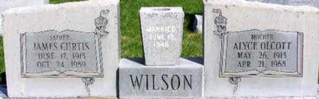 WILSON, JAMES CURTIS - Wasatch County, Utah | JAMES CURTIS WILSON - Utah Gravestone Photos
