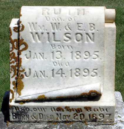 WILSON, BABY - Wasatch County, Utah | BABY WILSON - Utah Gravestone Photos