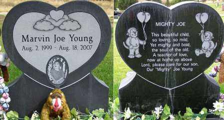 YOUNG, MARVIN JOE - Wasatch County, Utah | MARVIN JOE YOUNG - Utah Gravestone Photos