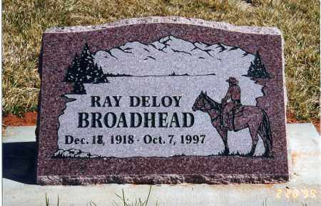 BROADHEAD, RAY DELOY - Washington County, Utah | RAY DELOY BROADHEAD - Utah Gravestone Photos