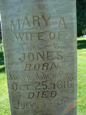 JONES, MARY ANN - Weber County, Utah | MARY ANN JONES - Utah Gravestone Photos