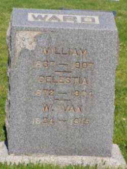 BAILEY, CELESTIA - Weber County, Utah | CELESTIA BAILEY - Utah Gravestone Photos