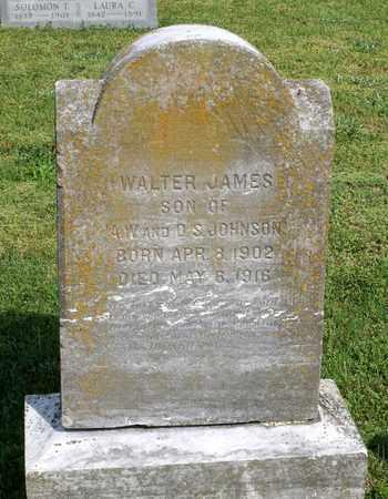 JOHNSON, WALTER JAMES - Accomack County, Virginia   WALTER JAMES JOHNSON - Virginia Gravestone Photos