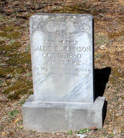 JOHNSON, SALLIE E. - Albemarle County, Virginia | SALLIE E. JOHNSON - Virginia Gravestone Photos