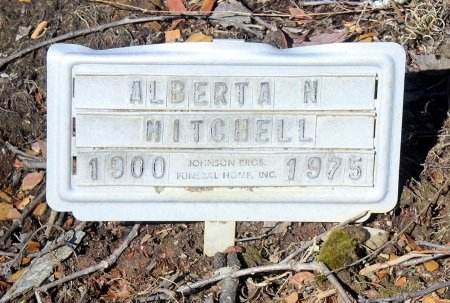 MITCHELL, ALBERTA N. - Albemarle County, Virginia | ALBERTA N. MITCHELL - Virginia Gravestone Photos
