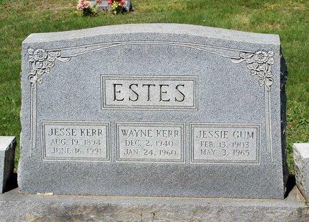 GUM ESTES, JESSIE - Alleghany County, Virginia | JESSIE GUM ESTES - Virginia Gravestone Photos