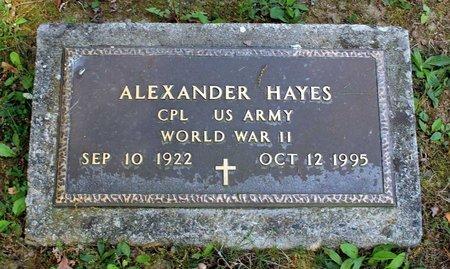 HAYES, ALEXANDER - Alleghany County, Virginia | ALEXANDER HAYES - Virginia Gravestone Photos