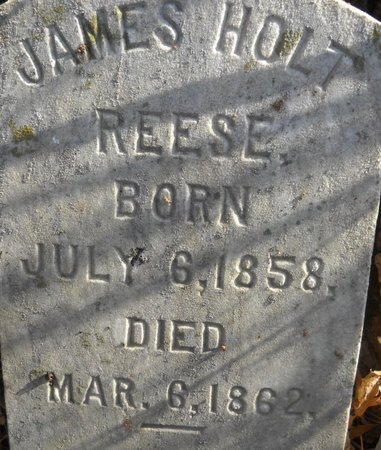 REESE, JAMES - Bedford County, Virginia | JAMES REESE - Virginia Gravestone Photos