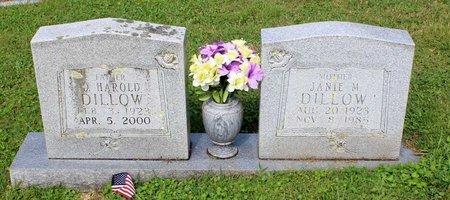 DILLOW, DAVID HAROLD - Bland County, Virginia   DAVID HAROLD DILLOW - Virginia Gravestone Photos