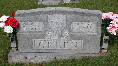 GREEN, WILLIAM NYE - Bland County, Virginia | WILLIAM NYE GREEN - Virginia Gravestone Photos