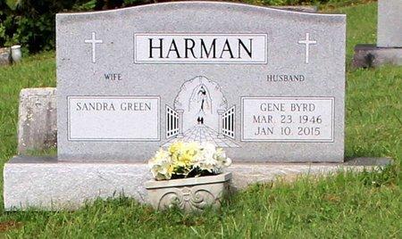 HARMAN, GENE BYRD - Bland County, Virginia   GENE BYRD HARMAN - Virginia Gravestone Photos