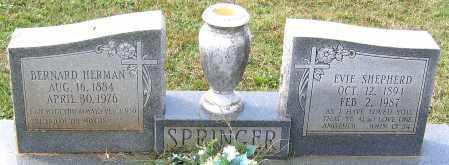 SHEPHERD SPRINGER, EVIE - Buckingham County, Virginia | EVIE SHEPHERD SPRINGER - Virginia Gravestone Photos