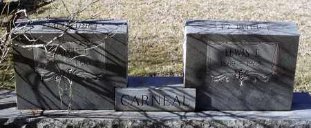 CARNEAL, LEWIS L. - Caroline County, Virginia | LEWIS L. CARNEAL - Virginia Gravestone Photos