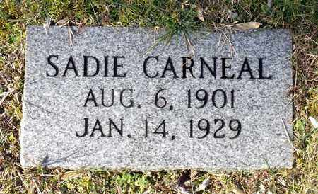 CARNEAL, SADIE - Caroline County, Virginia | SADIE CARNEAL - Virginia Gravestone Photos
