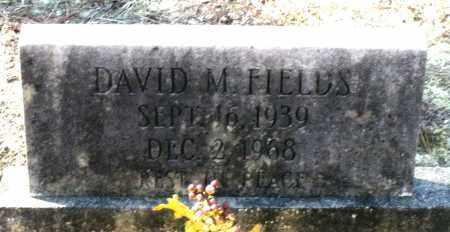 FIELDS, DAVID M. - Caroline County, Virginia | DAVID M. FIELDS - Virginia Gravestone Photos