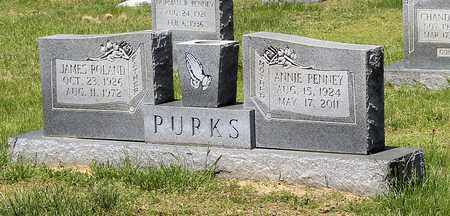 PURKS, JAMES ROLAND - Caroline County, Virginia | JAMES ROLAND PURKS - Virginia Gravestone Photos