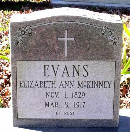 EVANS, ELIZABETH ANN - Charles City County, Virginia | ELIZABETH ANN EVANS - Virginia Gravestone Photos