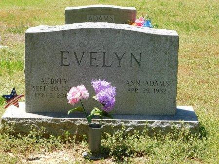 EVELYN, AUBREY - Charles City County, Virginia   AUBREY EVELYN - Virginia Gravestone Photos