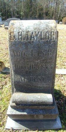 TAYLOR, E H - Charles City County, Virginia | E H TAYLOR - Virginia Gravestone Photos