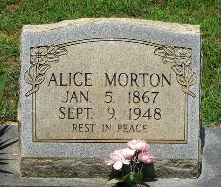 MORTON, ALICE - Charlotte County, Virginia   ALICE MORTON - Virginia Gravestone Photos