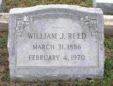 REED, WILLIAM J. - Chesterfield County, Virginia | WILLIAM J. REED - Virginia Gravestone Photos