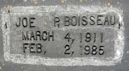 BOISSEAU, JOE P. - Dinwiddie County, Virginia | JOE P. BOISSEAU - Virginia Gravestone Photos