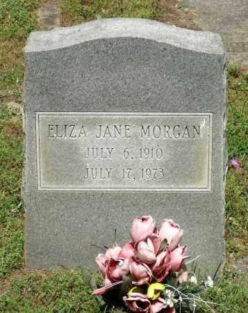 MORGAN, ELIZA JANE - Dinwiddie County, Virginia | ELIZA JANE MORGAN - Virginia Gravestone Photos