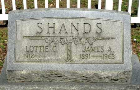 SHANDS, JAMES A. - Dinwiddie County, Virginia   JAMES A. SHANDS - Virginia Gravestone Photos