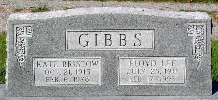 GIBBS, FLOYD LEE - Essex County, Virginia | FLOYD LEE GIBBS - Virginia Gravestone Photos