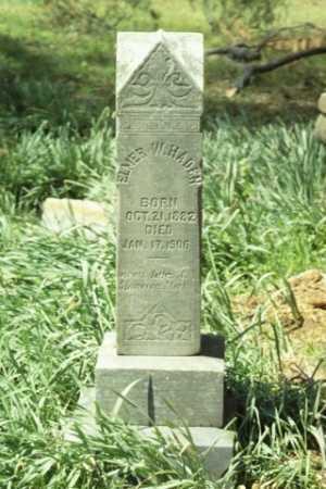 HADEN, ELMER W - Fluvanna County, Virginia | ELMER W HADEN - Virginia Gravestone Photos