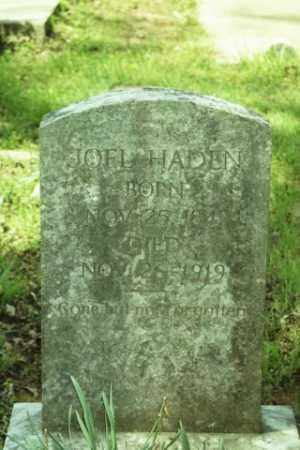 HADEN, JOEL - Fluvanna County, Virginia   JOEL HADEN - Virginia Gravestone Photos