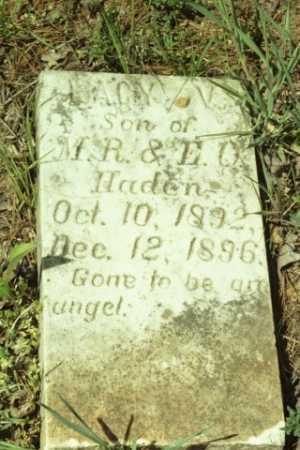 HADEN, LACY V - Fluvanna County, Virginia | LACY V HADEN - Virginia Gravestone Photos