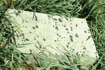 HADEN, ROSWELL EDWARD - Fluvanna County, Virginia   ROSWELL EDWARD HADEN - Virginia Gravestone Photos