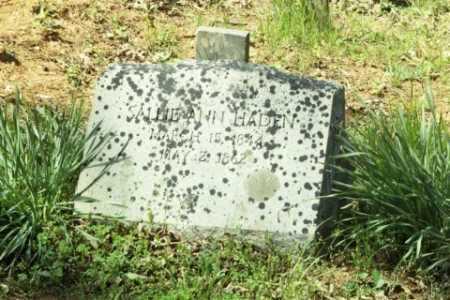 HADEN, SALLIE ANN - Fluvanna County, Virginia | SALLIE ANN HADEN - Virginia Gravestone Photos