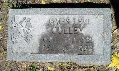 CULLEY, JAMES LEVI - Gloucester County, Virginia | JAMES LEVI CULLEY - Virginia Gravestone Photos