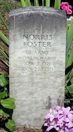 FOSTER, NORRIS - Gloucester County, Virginia | NORRIS FOSTER - Virginia Gravestone Photos