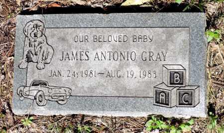 GRAY, JAMES ANTONIO - Gloucester County, Virginia | JAMES ANTONIO GRAY - Virginia Gravestone Photos