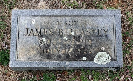BEASLEY, JAMES B. - Greene County, Virginia | JAMES B. BEASLEY - Virginia Gravestone Photos