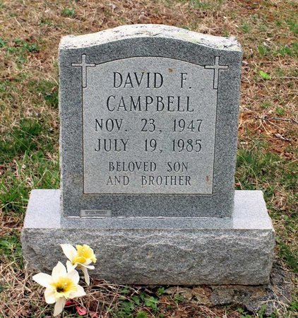 CAMPBELL, DAVID F. - Greene County, Virginia | DAVID F. CAMPBELL - Virginia Gravestone Photos