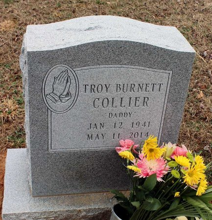 COLLIER, TROY BURNETT - Greene County, Virginia | TROY BURNETT COLLIER - Virginia Gravestone Photos