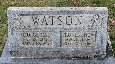WATSON, GEORGE NAT - Greene County, Virginia | GEORGE NAT WATSON - Virginia Gravestone Photos