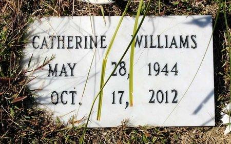 WILLIAMS, CATHERINE - Greensville County, Virginia   CATHERINE WILLIAMS - Virginia Gravestone Photos