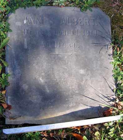ALBERT, JAMES - Hanover County, Virginia | JAMES ALBERT - Virginia Gravestone Photos