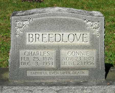 BREEDLOVE, CONNIE - Hanover County, Virginia | CONNIE BREEDLOVE - Virginia Gravestone Photos