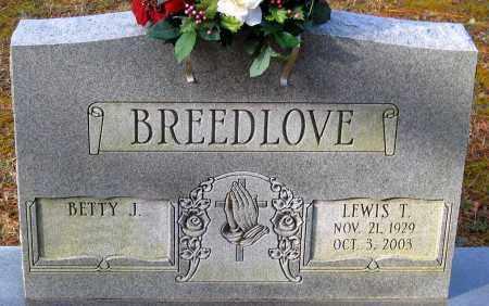 BREEDLOVE, LEWIS T. - Hanover County, Virginia   LEWIS T. BREEDLOVE - Virginia Gravestone Photos
